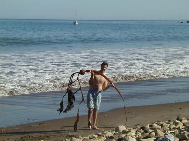 muž s velkou řasou Kelp